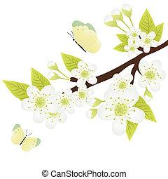 apple-tree branch - Vector illustration of apple-tree branch...