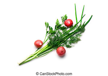 Parsley, radish, spring onions and dill isolated on white
