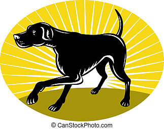 Pointer dog with sunburst - illustration of a Pointer dog...