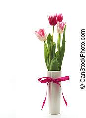 Tulips - Flower