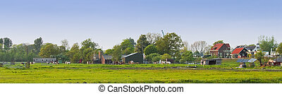 Panorama Dutch country landscape in spring
