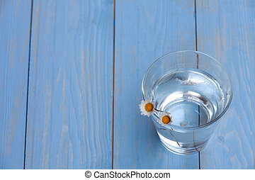 daisies in a glass with water