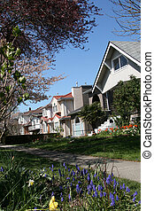 Vancouver City Suburban Life, BC, Canada - The City of...