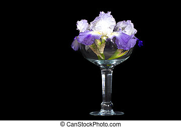 Full View Crystal and Iris - Fullview of large crystal...