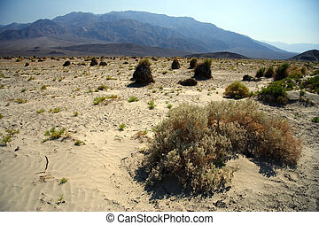 Desolate Landscape, Death Valley National Park, California