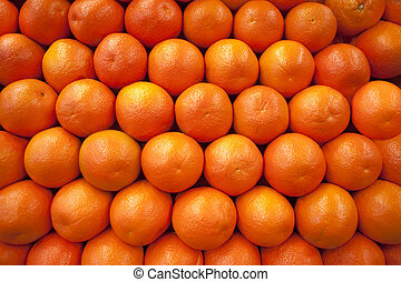 Oranges in rows