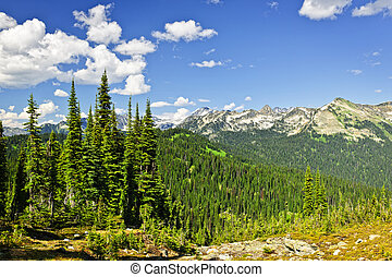 Rocky mountain view from Mount Revelstoke - Scenic view from...