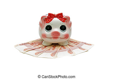 piggy bank and banknotes