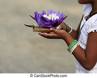 Flowers of a lotus in hands of the little girl