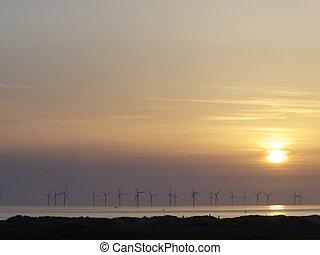 windfarm - Windfarm at sunset