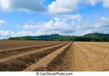 ploughed field - soil which has been ploughed with english...