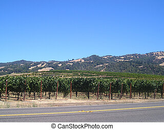 Napa, Sonoma wine country. - Napa, Sonoma wine country in...