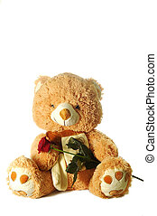 toy bear holding red rose