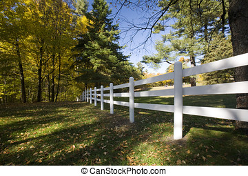 White Fence Line in Autumn Scene - A white wooden fence line...