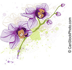 floral background with orchids - hand drawn vector floral...