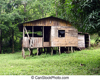 Rundown shack house in the Woods with figure head in window