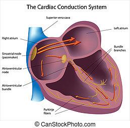 elektryczny, ścieżki, serce