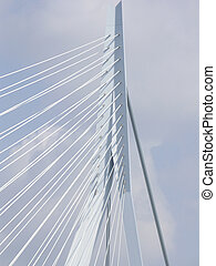 Close up of the Erasmus bridge - Close up of the Erasmus...