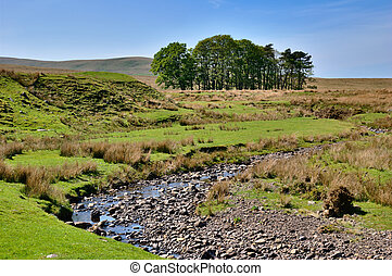 Moorland stream - A partially dry meandering moorland stream...