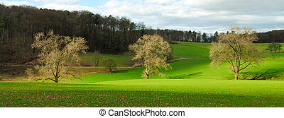 Idyllic rural landscape in nice light - Panorama of a green...
