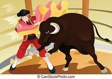 Bull fighting matador - A vector illustration of a matador...