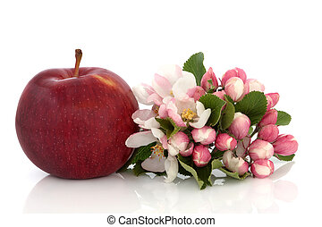 Apple and Flower Blossom