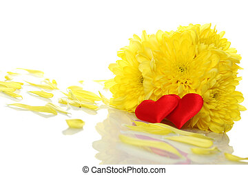 Yellow chrysanthemums with two red hearts. Gift. Isolated on...