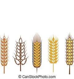 Cereal design elements