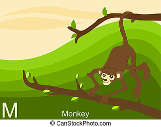 Animal alphabet, M for monkey
