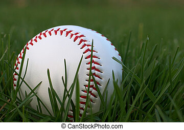 Baseball Sitting in Green Grass - Low angle shot of Baseball...