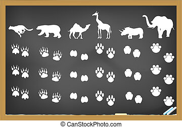 animals footprints on blackboard