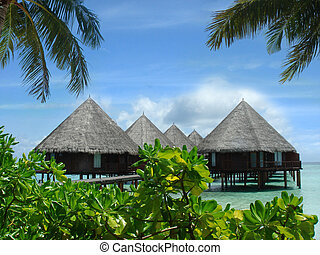 Maldives - Bungalows on the water. View from the shore...