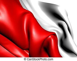 Flag of Poland against white background Close up