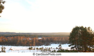panorama of winter forest