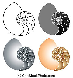 Nautilus - Vector illustration of a nautilus Different...