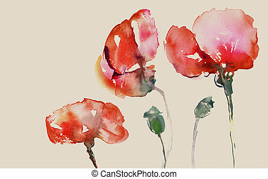 painted poppies - poppies in watercolor on beige background