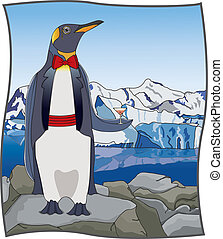 Uptown Penguin - Vector art in Illustrator 8. King penguin...