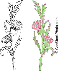 Red Thistle - Vector art in Illustrator 8. Hand-drawn in...