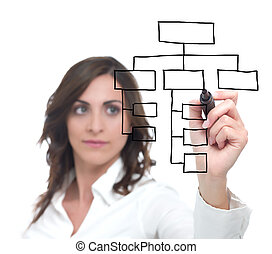 Organization chart - Businesswoman draw organization chart
