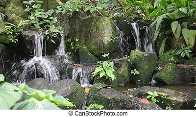 Waterfall and greenery - Waterfall in the forest