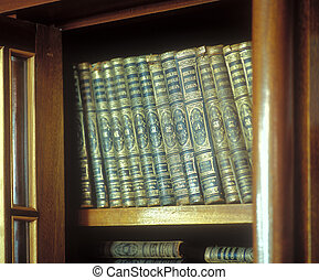 Old books. - Old books in an old wooden case.