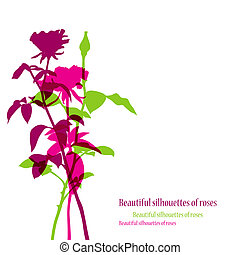 Beautiful rose flowers silhouettes.