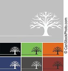 oak tree  - oak tree