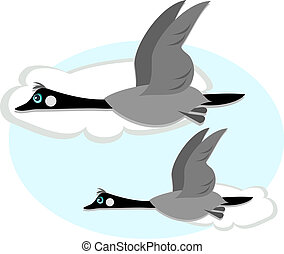 Canadian Geese in Flight - Here are two geese flying in the...
