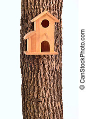 Modern starling-house on a tree trunk isolated