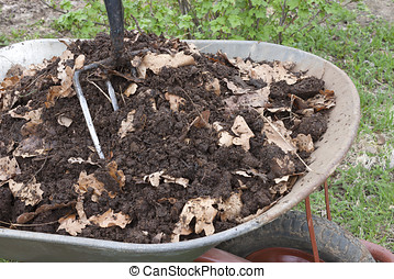 Humus is mixed with oak leaf in a wheelbarrow