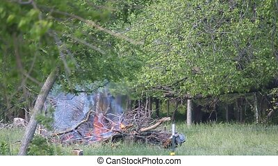Wood Pile on Fire - This is a controled fire. All branches...