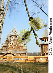 Kind through willow on Wooden orthodox church Russia...
