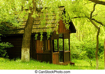 Old wood house in forest