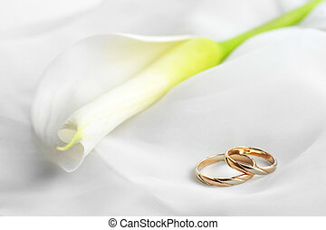 White fabric and wedding rings - White transparent fabric...